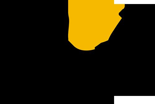 OGO Pizza Logo